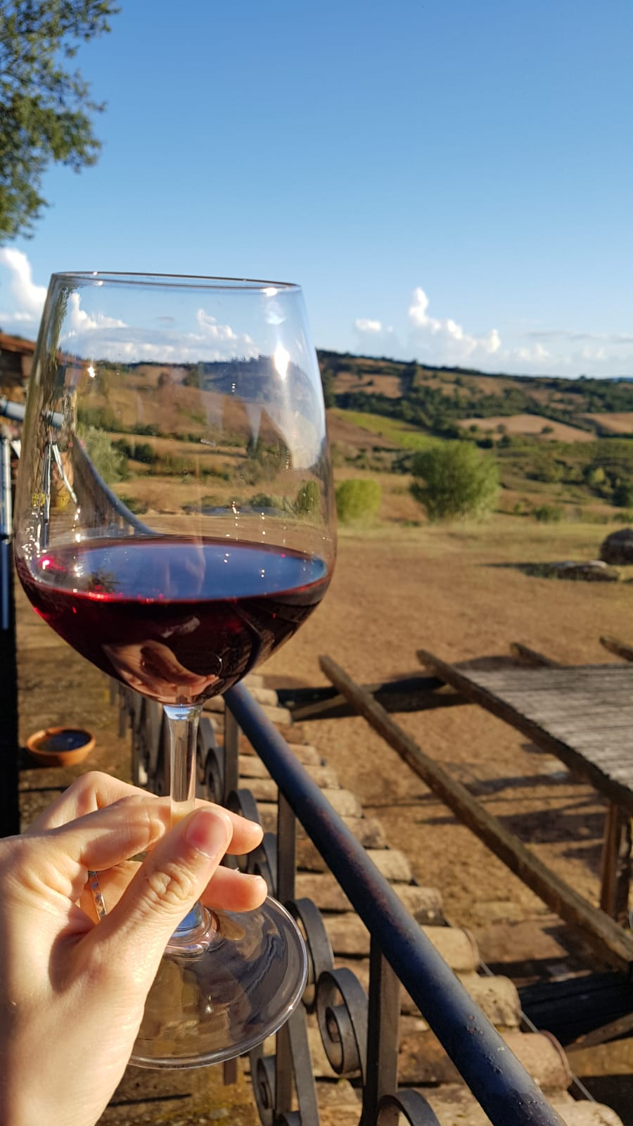 Wine, Cheese and Villages