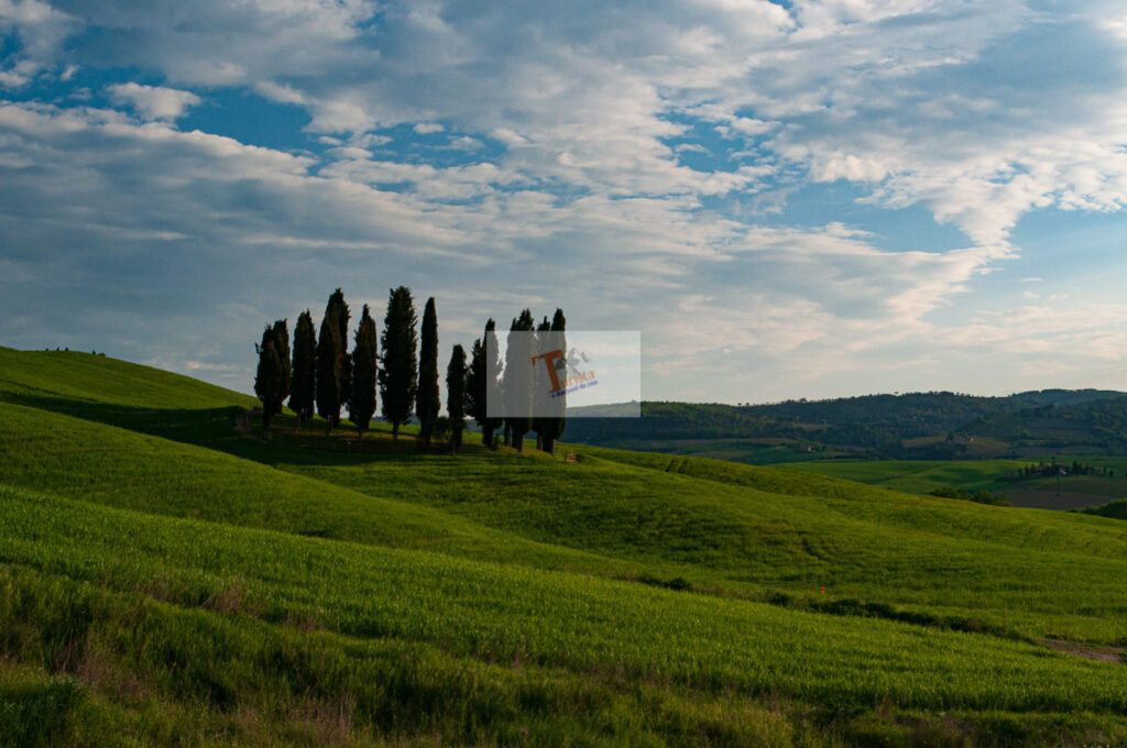 San Quirico d'Orcia, panorama of the Sienese countryside